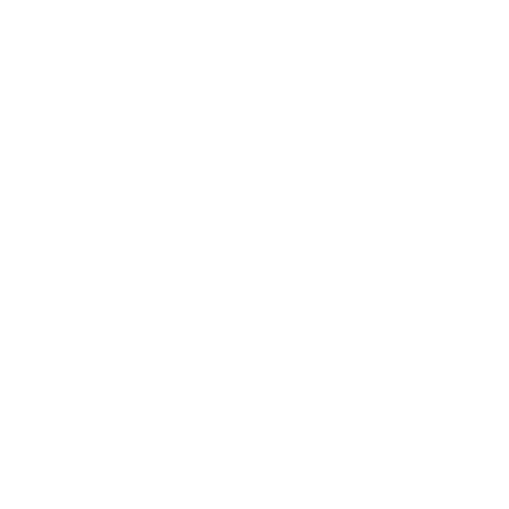 Einstein Character Head